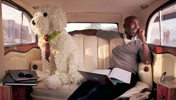 Preston Bailey with one of his floral dogs. Photo Courtesy Brides Magazine.